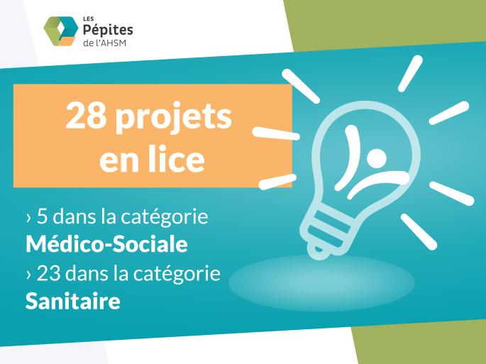 28 projets-01