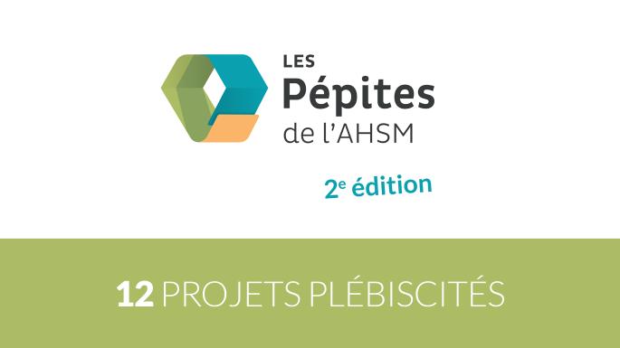 Pépites 2e edition 2.png